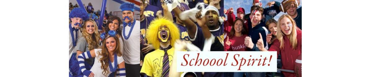 School Spirit Team Colors