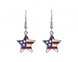 American Flag Crystal Star Hook Earrings