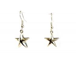 Silver Star Charm Hook Earrings